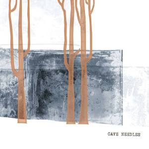 caveneedlescover